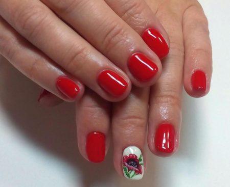 nails_ideas_pics-21