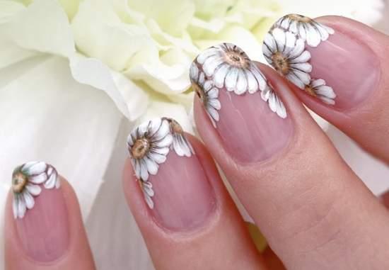 Фото дизайна ногтей с ромашками на прозрачном фоне