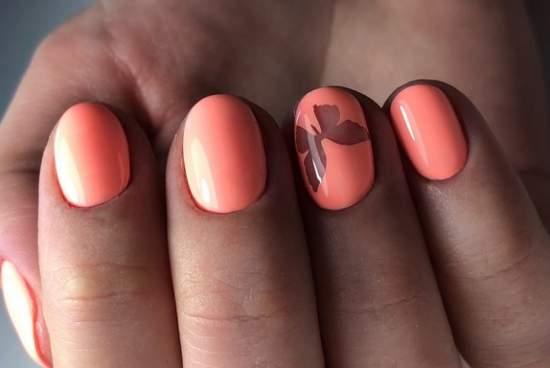 полупрозрачные ногти с бабочкой