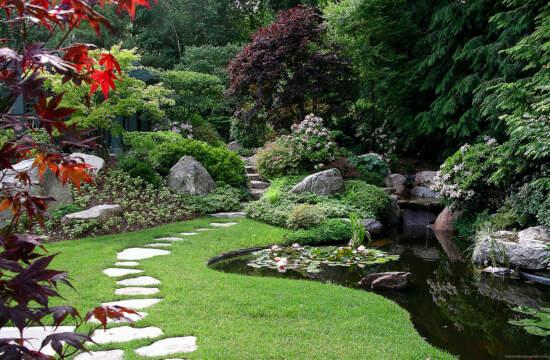 Противопоставление регулярного и пейзажного стилей ландшафтного дизайна
